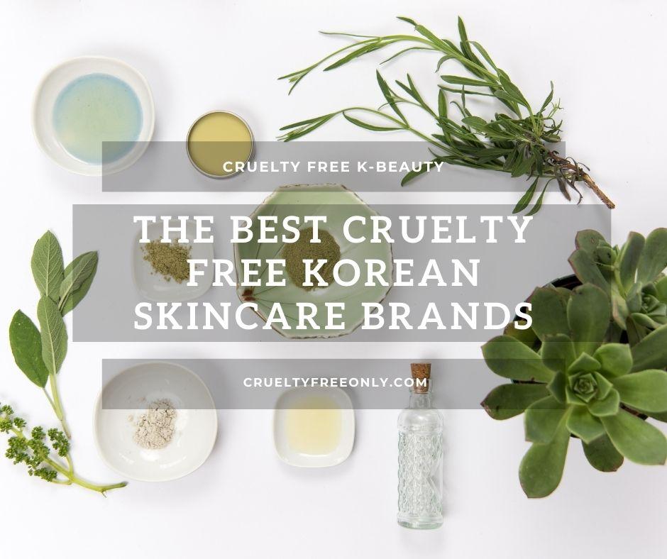 Cruelty Free Korean Skin Care featured photo